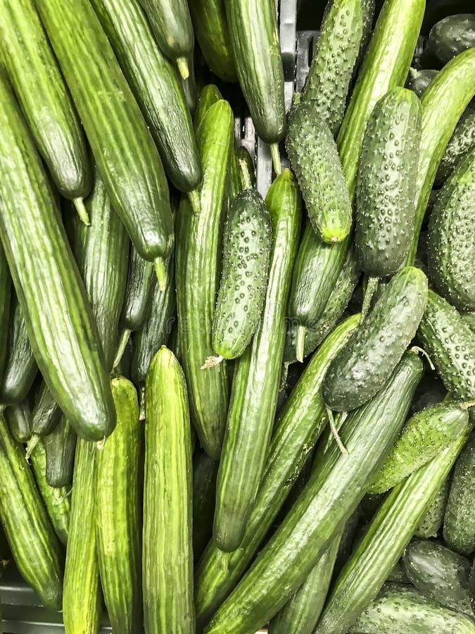 Fondo di verdure, struttura, cetrioli verdi in supermercato immagine stock