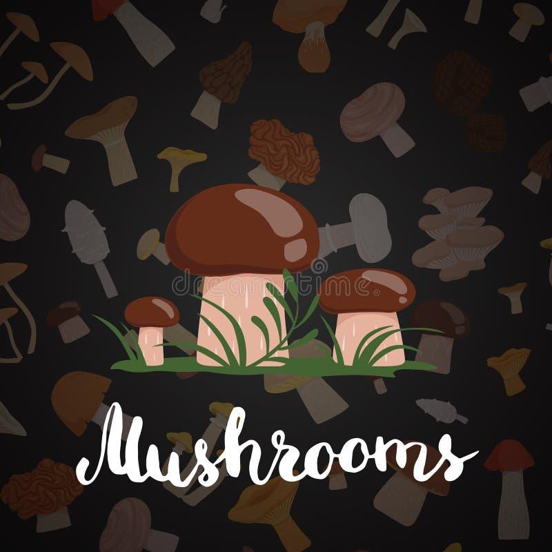 Fondo di vettore con i funghi e l'iscrizione del fumetto illustrazione di stock