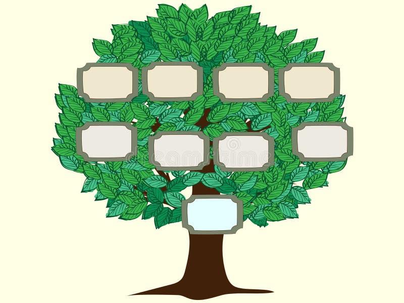 Fondo di vettore della persona dell'albero genealogico uno royalty illustrazione gratis