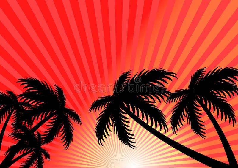 Fondo di vettore di estate di tramonto immagini stock libere da diritti