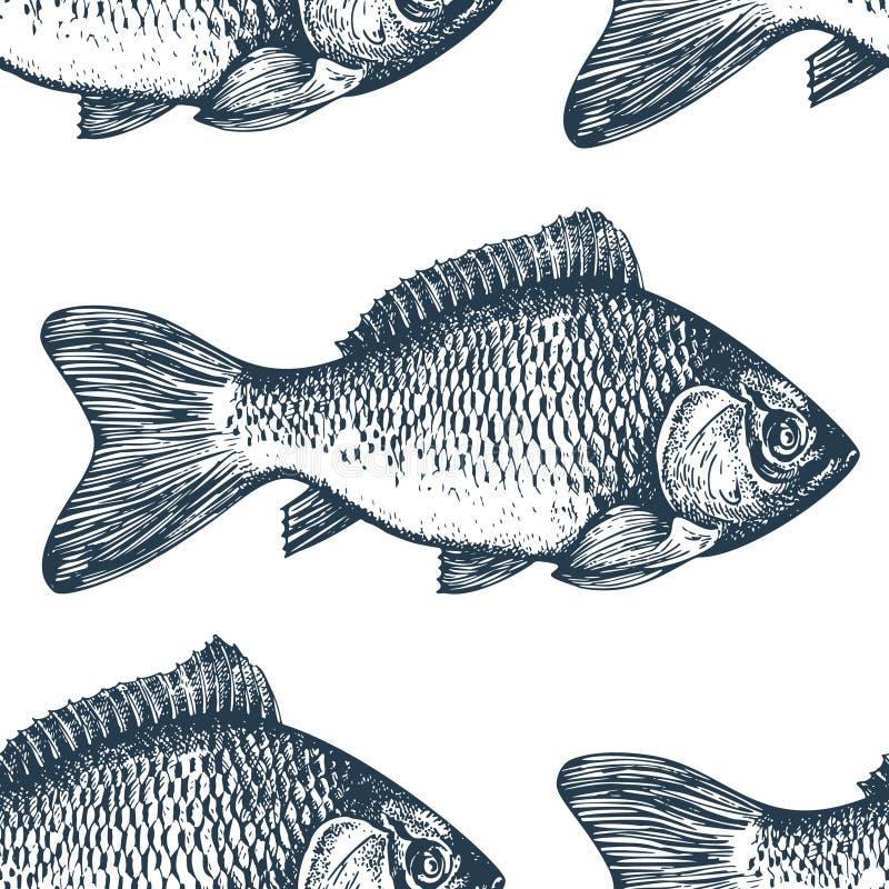 Fondo dibujado mano de los mariscos del bosquejo Modelo inconsútil del vector con los pescados Ejemplo de la carpa del vintage Pu stock de ilustración