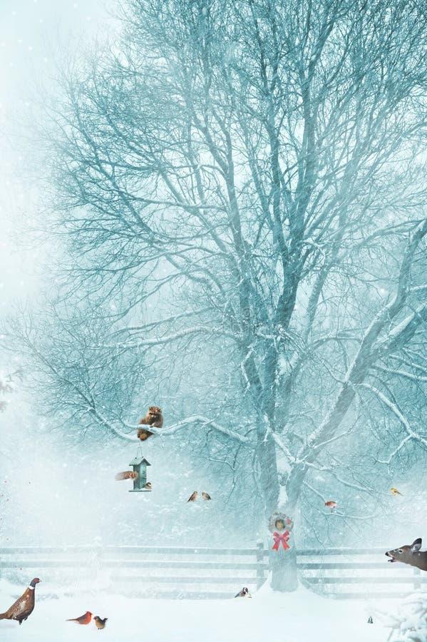 Fondo divertido de la tarjeta de Navidad. fotografía de archivo libre de regalías