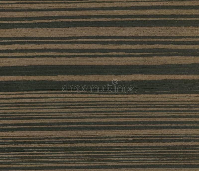 Fondo ebano a strisce dell'impiallacciatura della mobilia di struttura Struttura di legno del granulo Legno dell'ebano fotografia stock libera da diritti