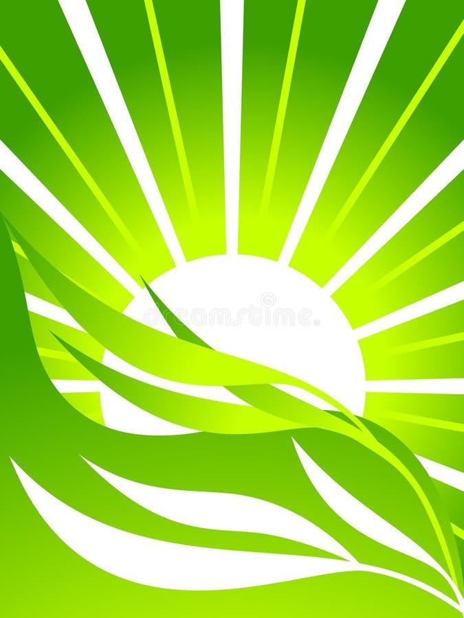 Fondo ecológico con las hojas stock de ilustración
