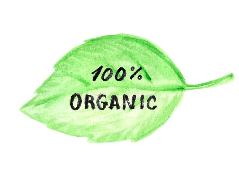 Fondo el 100% verde orgánico de la hoja libre illustration