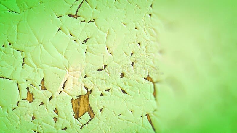Fondo elegante hermoso del diseño del arte gráfico del ejemplo de la hoja del fondo verde del organismo ilustración del vector