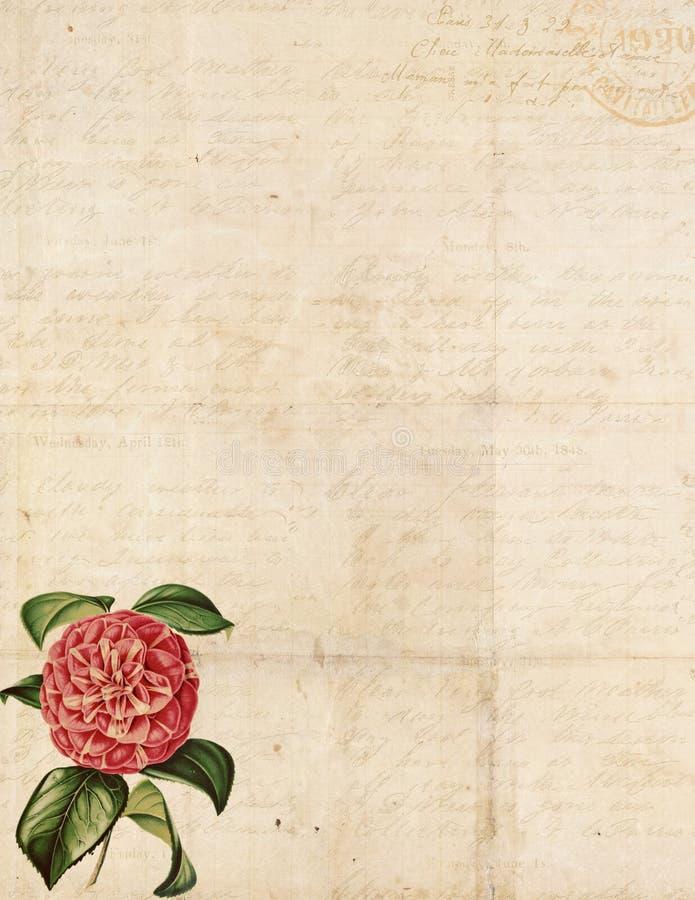 Fondo elegante lamentable de la vendimia con las flores ilustración del vector