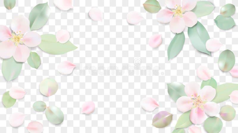 Fondo en colores pastel con las hojas de la flor ilustración del vector