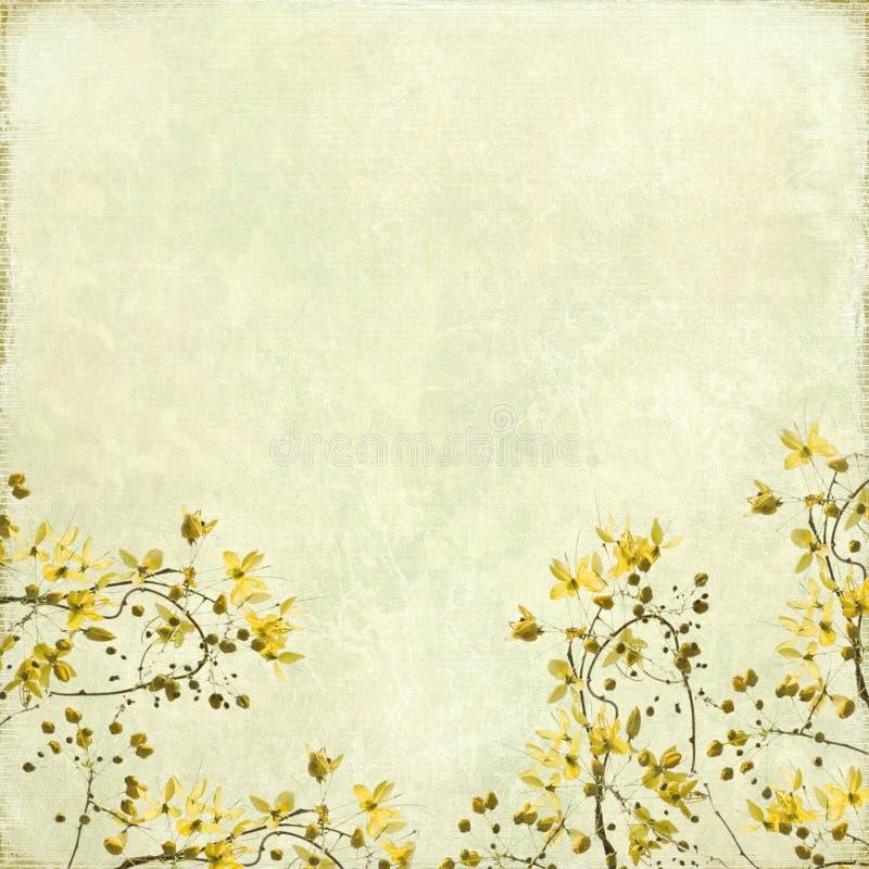 Fondo enredado de la frontera del flor fotografía de archivo libre de regalías