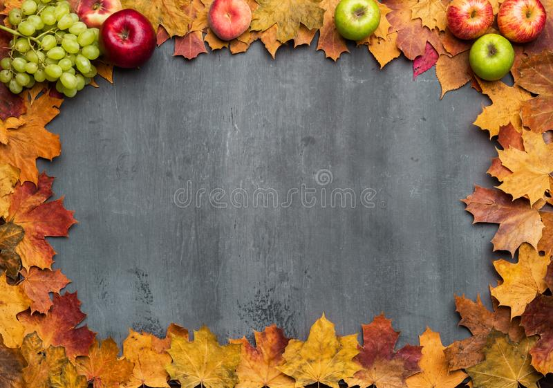 Fondo estacional del oto?o Capítulo de hojas de arce coloridas fotografía de archivo
