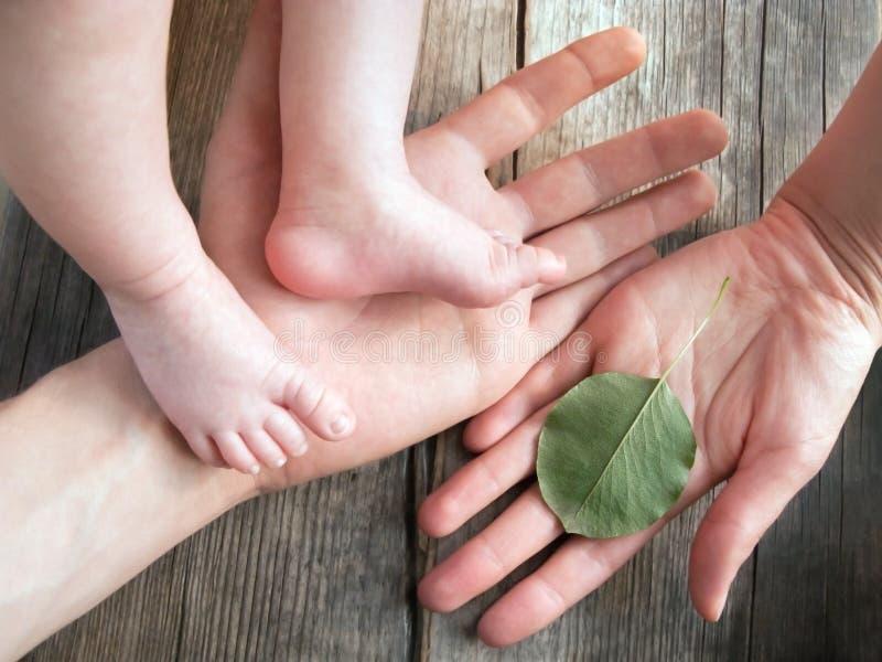 Fondo felice di ecologia di concetto 'nucleo familiare' fotografia stock libera da diritti