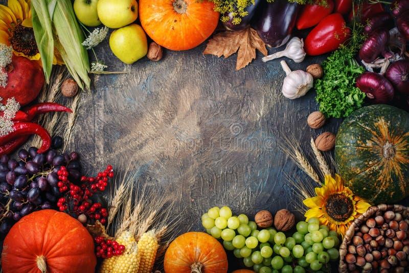 Fondo felice di giorno di ringraziamento, una tavola decorata con le zucche, cereale e foglie di autunno immagini stock libere da diritti