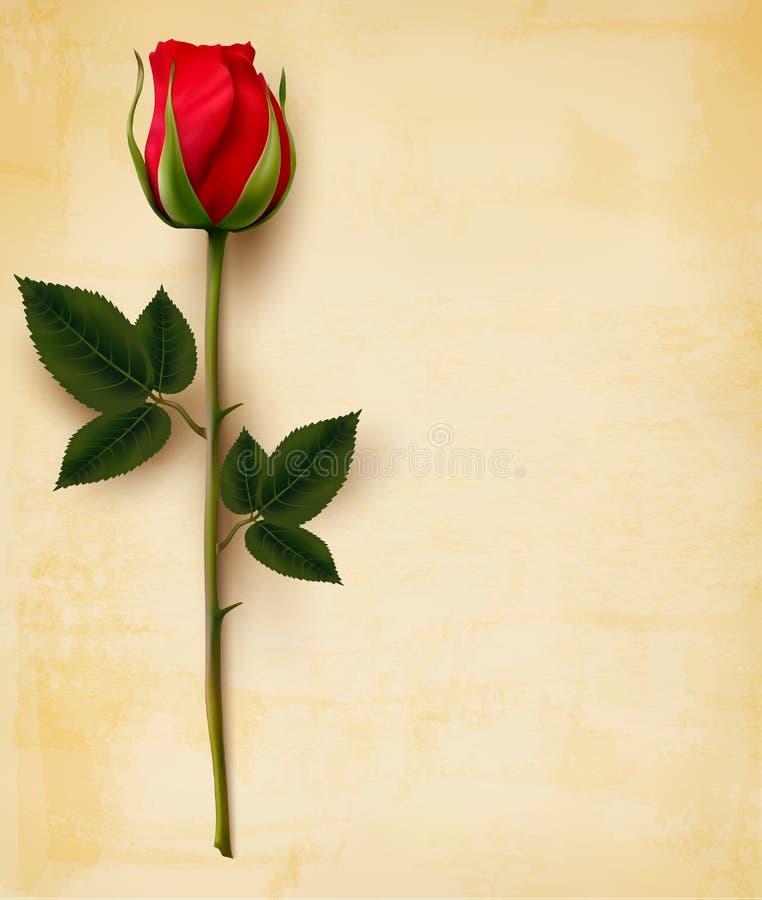 Fondo felice di San Valentino Rosa rossa su una vecchia carta illustrazione di stock