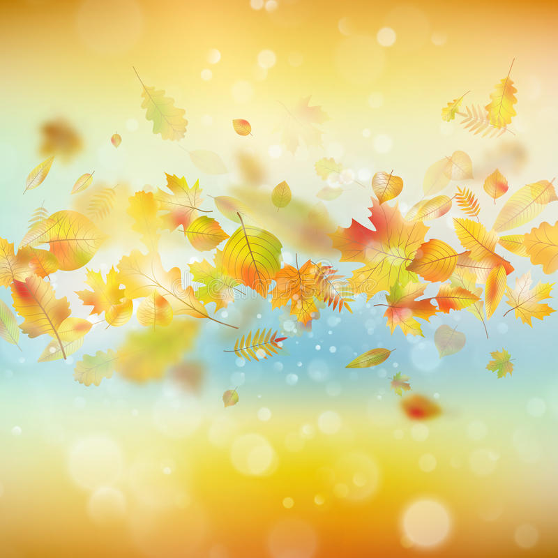 Fondo festivo del otoño Vector del EPS 10 ilustración del vector