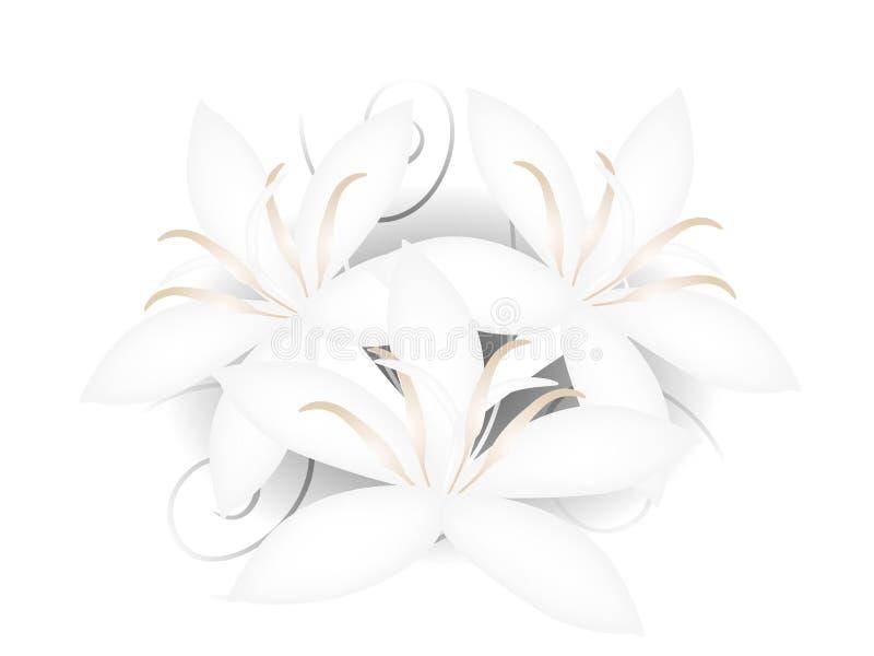 Fondo floral con las flores blancas abiertas del café stock de ilustración
