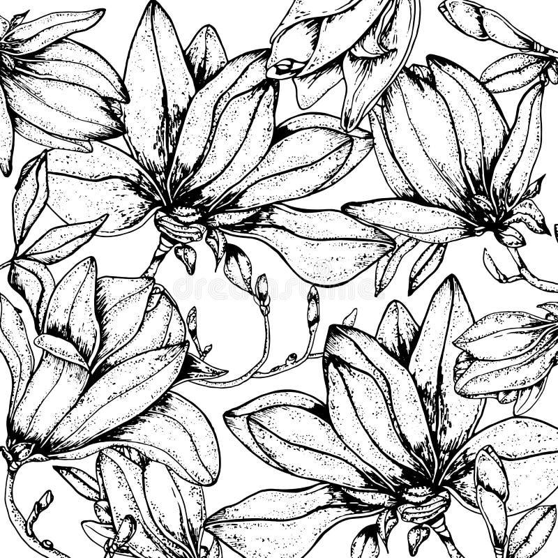 Fondo floral de la magnolia del garabato en vector con la página que colorea blanco y negro de los garabatos stock de ilustración
