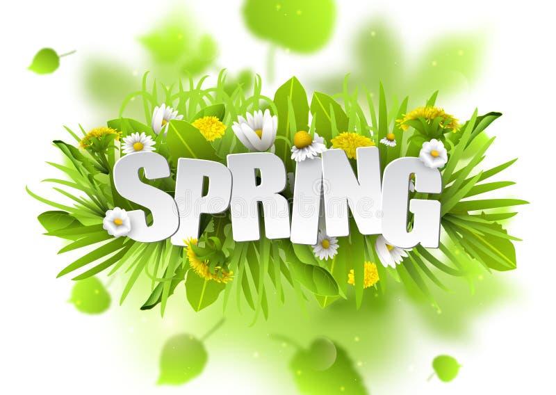 Fondo floral de la primavera con los dientes de león y las manzanillas en el fondo blanco ilustración del vector