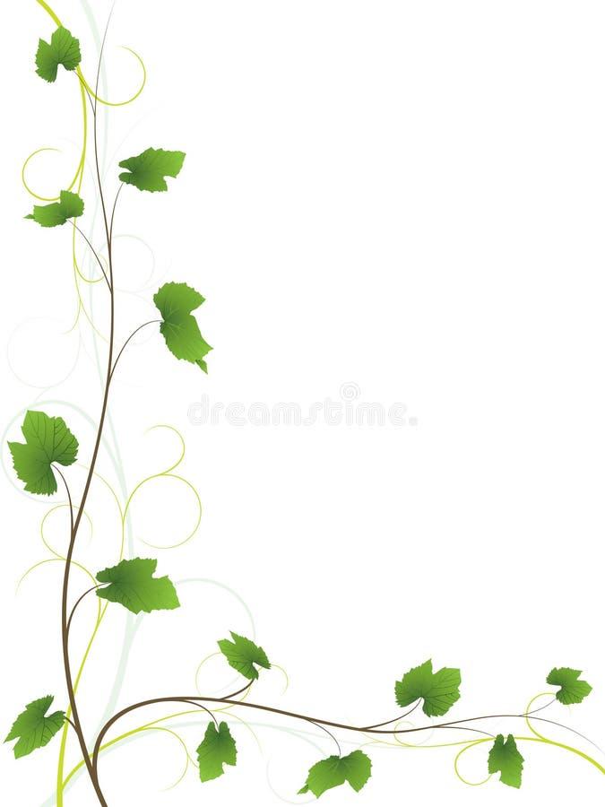 Fondo floral de la vid