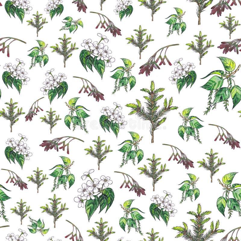 Fondo floral decorativo libre illustration