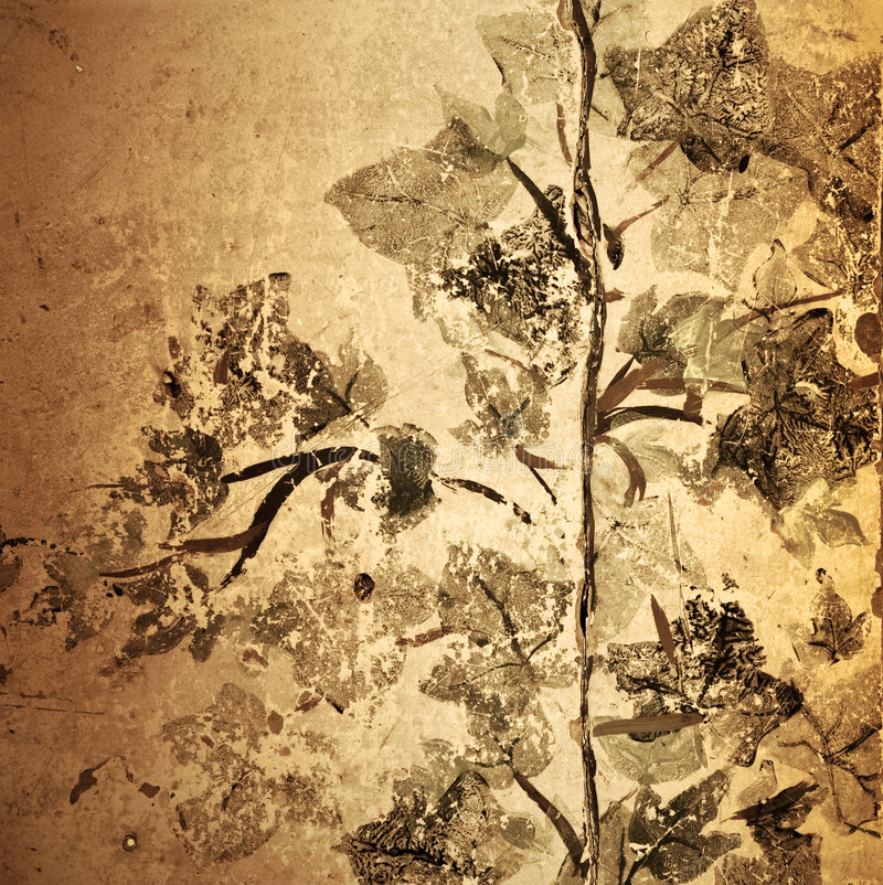 Fondo floral del grunge antiguo fotos de archivo