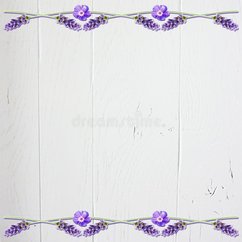 Fondo floral del libro de recuerdos de la lavanda con la madera blanca fotos de archivo