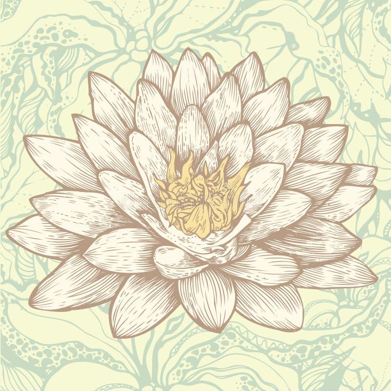 Fondo floral del loto y del extracto ilustración del vector
