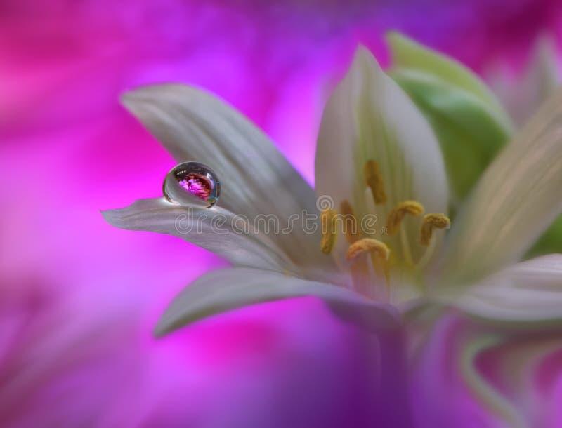 Fondo floral del resorte abstracto del arte para el diseño Gotita, descenso Púrpura, flor Fondo de la frontera de la primavera foto de archivo libre de regalías