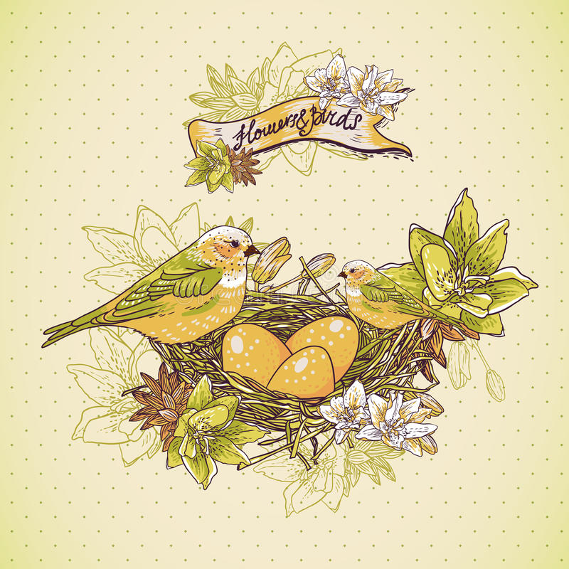 Fondo floral del vintage con los pájaros y la jerarquía libre illustration