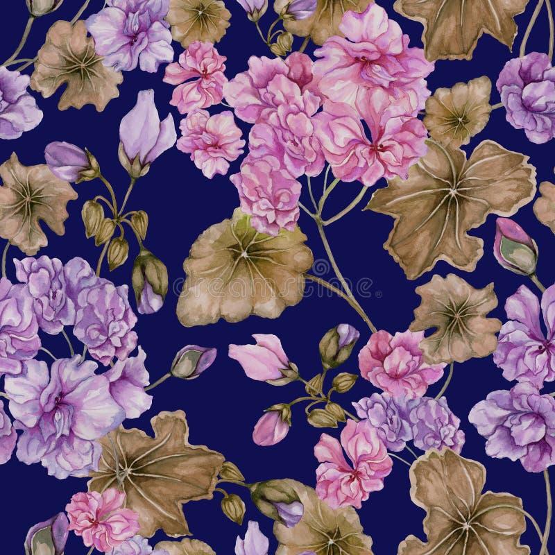 Fondo floral hermoso con las flores y las hojas del Pelargonium en fondo azul Modelo botánico inconsútil ilustración del vector