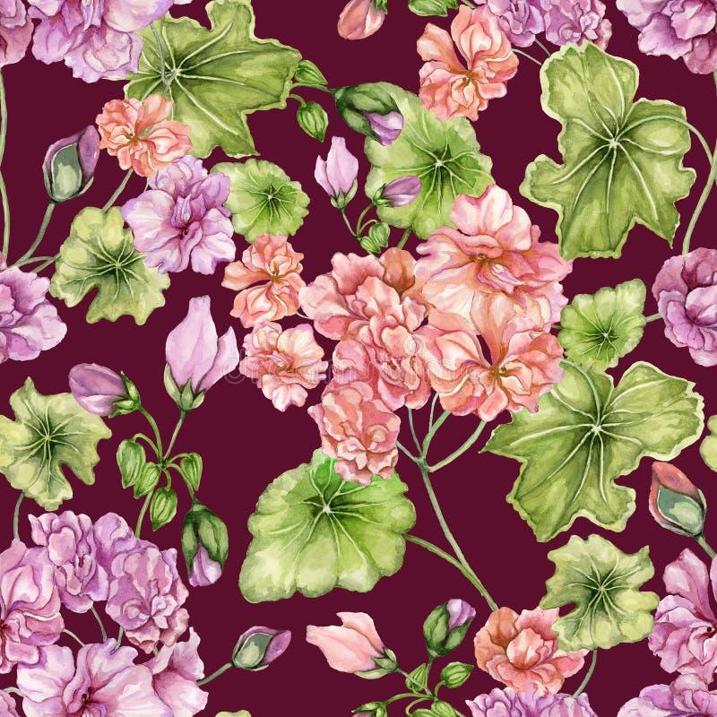 Fondo floral hermoso con las flores y las hojas del Pelargonium Modelo botánico inconsútil Pintura de la acuarela Pintado a mano stock de ilustración