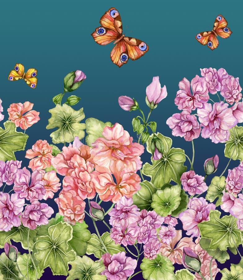Fondo floral hermoso con las flores y las mariposas del Pelargonium Modelo botánico inconsútil, frontera Pintura de la acuarela libre illustration