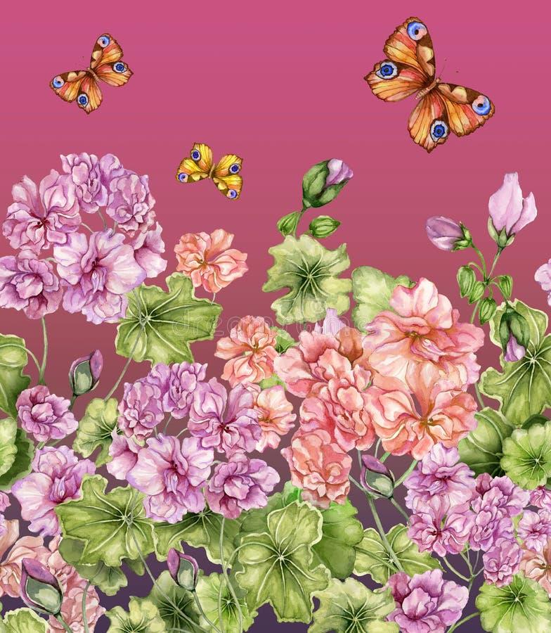 Fondo floral hermoso con las flores y las mariposas del Pelargonium Modelo botánico inconsútil, frontera Pintura de la acuarela ilustración del vector