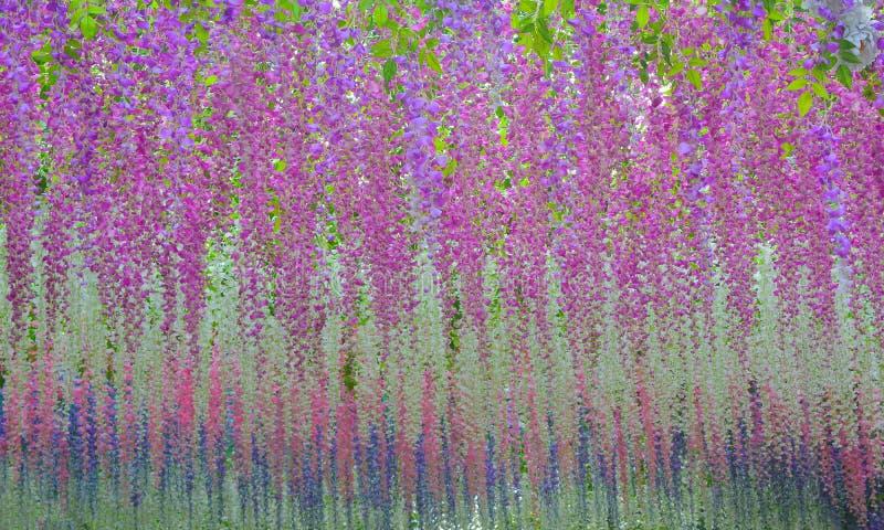 Fondo floral hermoso del fondo… con las flores coloridas imágenes de archivo libres de regalías