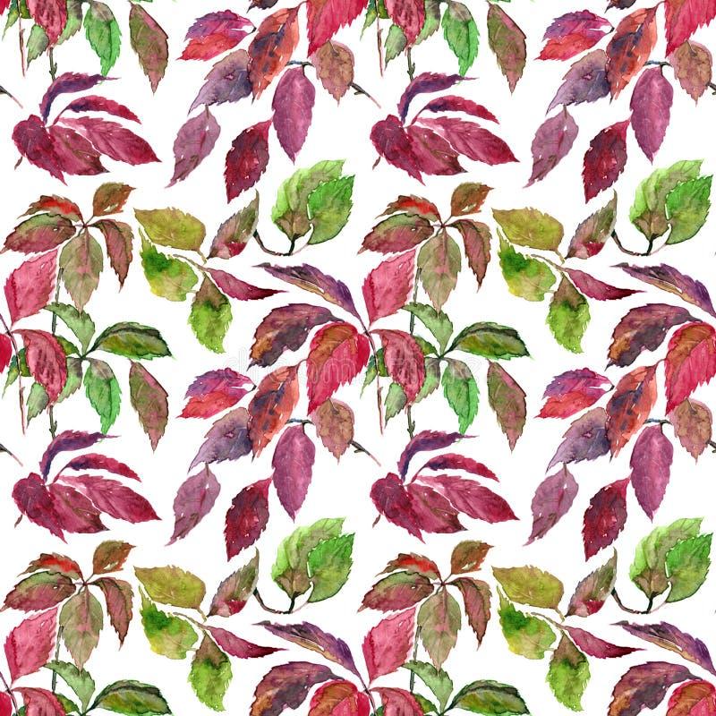 Fondo floral inconsútil Modelo de las hojas de otoño Plantilla del modelo de la materia textil ilustración del vector