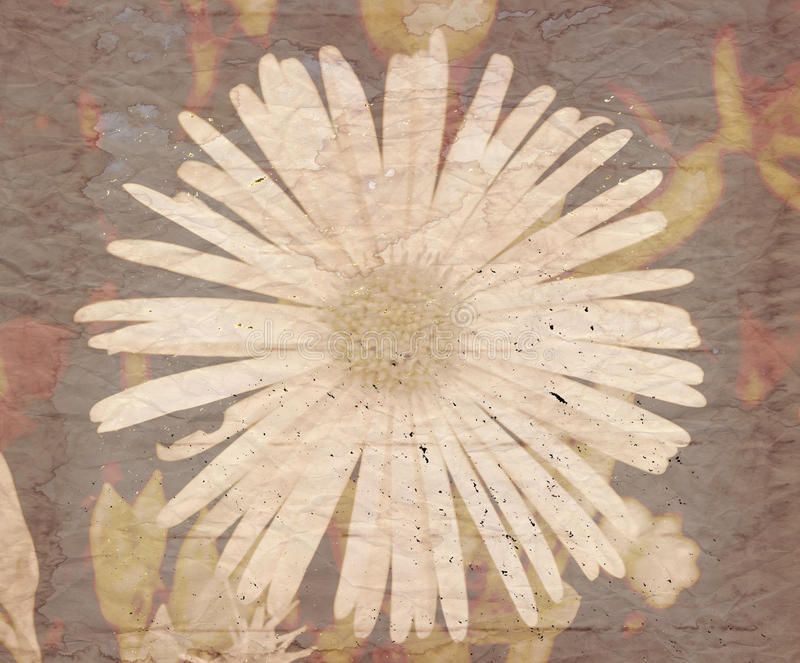 Fondo floral sucio con la capa de la textura fotos de archivo libres de regalías