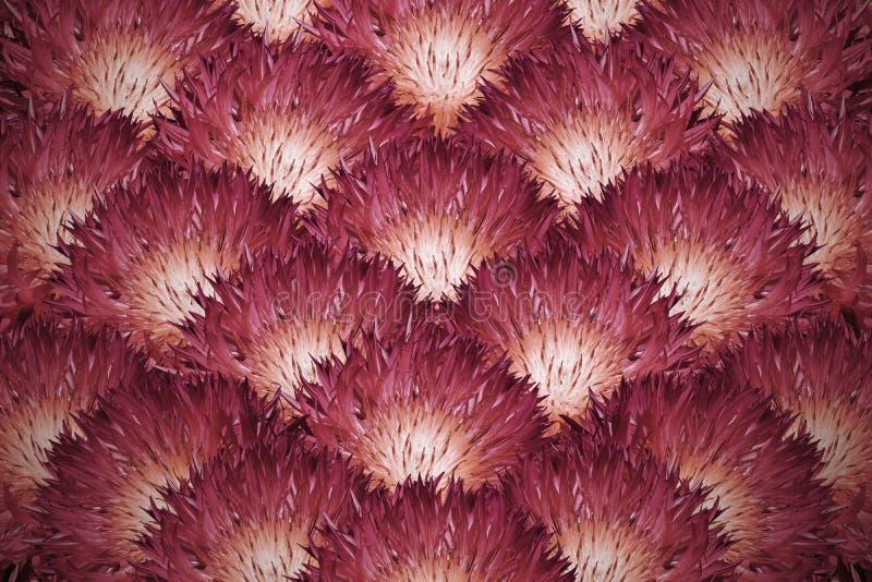 Fondo floral Un ramo de crisantemos mullidos rojo-anaranjados Composición de la flor fotografía de archivo