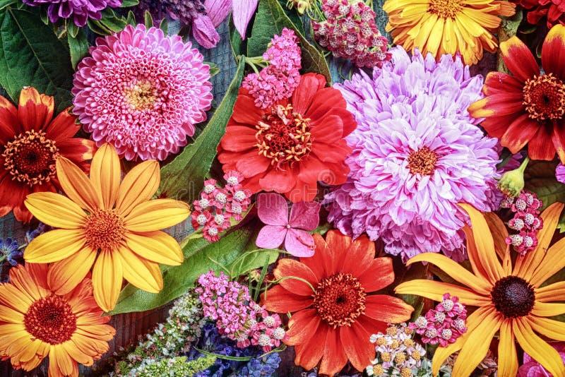 Fondo floral vibrante festivo fotos de archivo libres de regalías