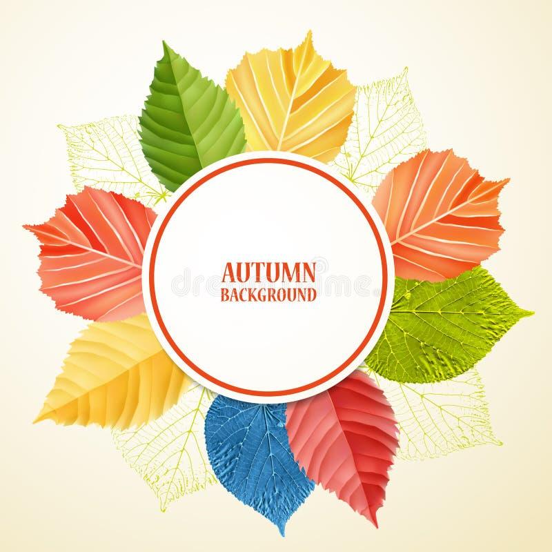 Fondo floreale astratto di autunno con il posto per il vostro testo illustrazione vettoriale