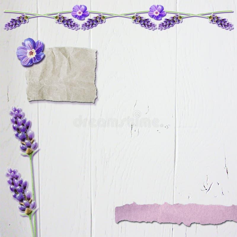 Fondo floreale dell'album per ritagli della lavanda con legno bianco #3 illustrazione vettoriale