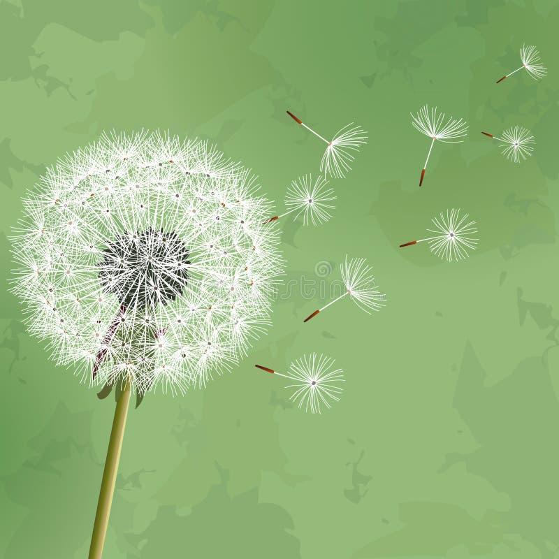 Fondo floreale dell'annata con il dente di leone del fiore illustrazione vettoriale
