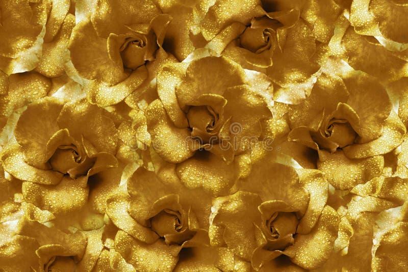 Fondo floreale di brown+ dalle rose Composizione nel fiore Fiori con le goccioline di acqua sui petali Primo piano immagine stock libera da diritti