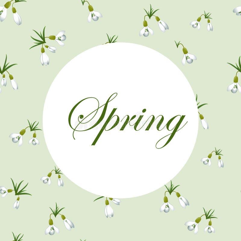 Fondo Fresco De La Primavera Con Los Pequeños Snowdrops Con Las ...