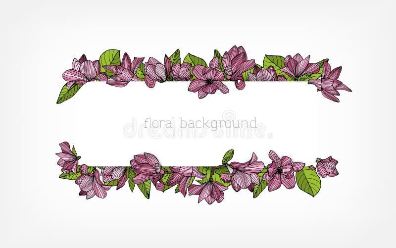 Fondo, frontera o marco horizontal adornados con las flores de la magnolia del rosa hermoso y las hojas florecientes del verde libre illustration
