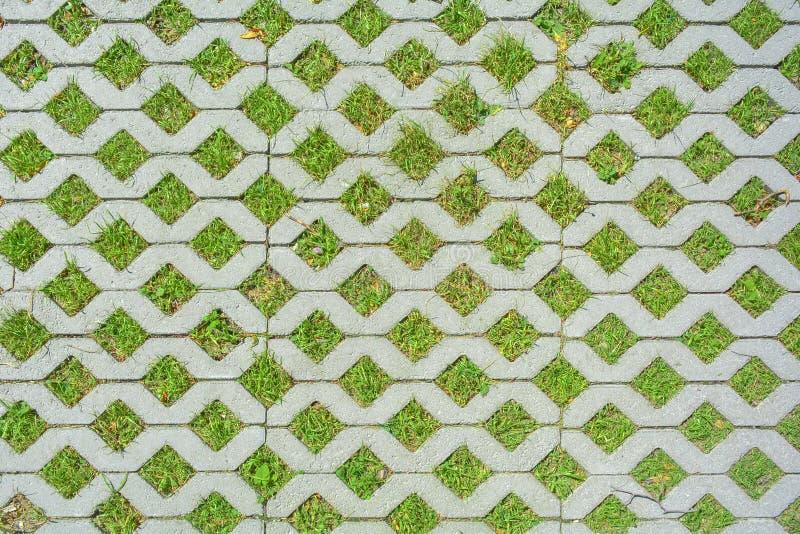 Fondo geometrico dei mattoni del pavimento di eco e dell'erba verde Struttura di parcheggio di Eco fotografia stock libera da diritti