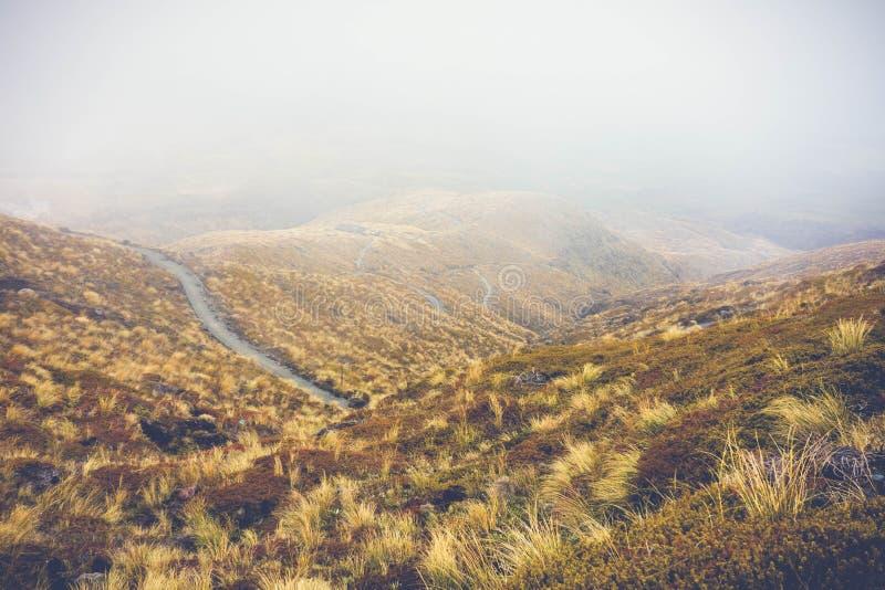 Fondo giallo del percorso della montagna dell'erba fotografie stock libere da diritti