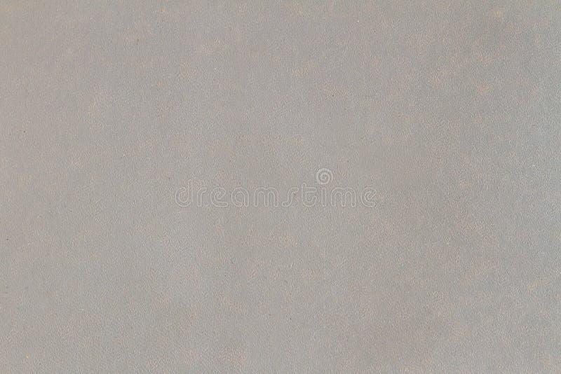 Fondo grigio fotografia stock libera da diritti