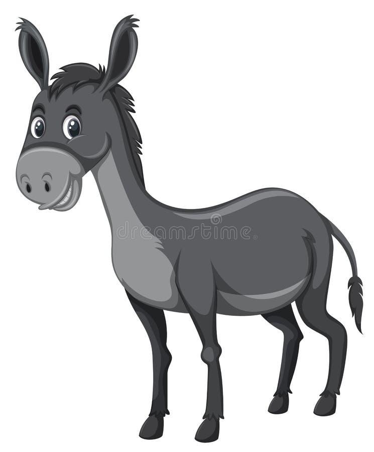 Fondo grigio di bianco dell'asino illustrazione di stock