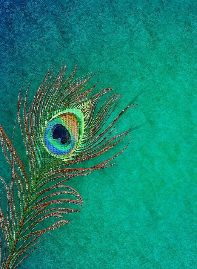 Fondo grungy della piuma del pavone illustrazione di stock