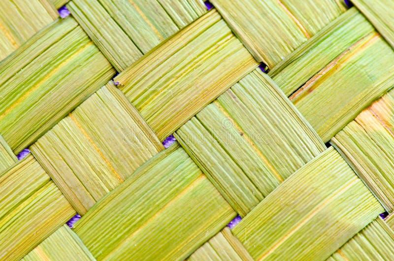 Fondo hecho de la hierba del vetiver (ziz de Vetiveria imagen de archivo