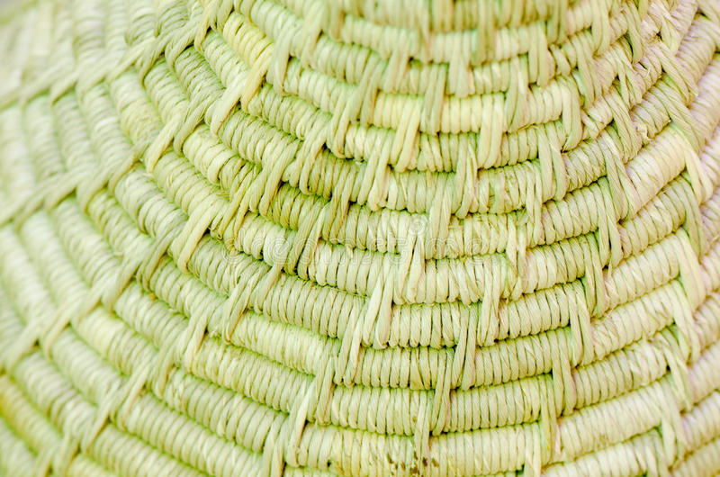 Fondo hecho de la hierba del vetiver (ziza de Vetiveria imagen de archivo